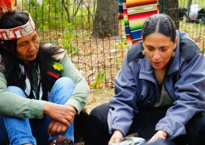 IndigenousWomenofTheAmericas7