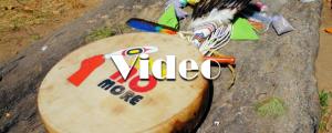 LINK-Video