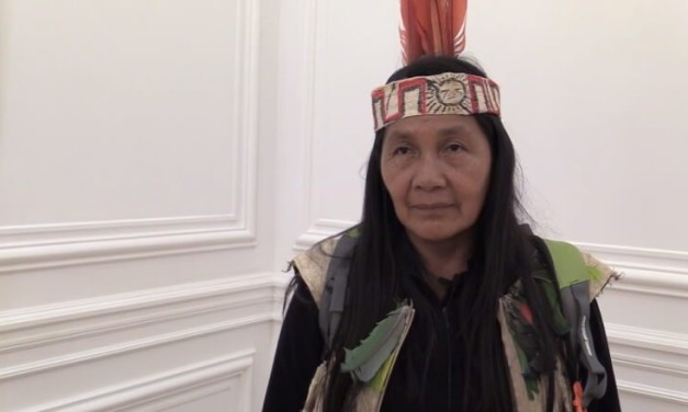 Escalating intimidation of and harassment against indigenous human rights defender